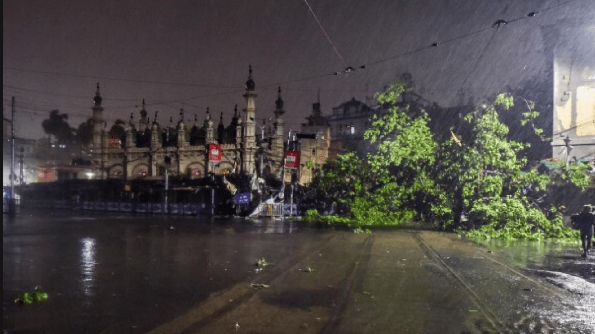Amphan-Kolkata-Trees-Uprooted